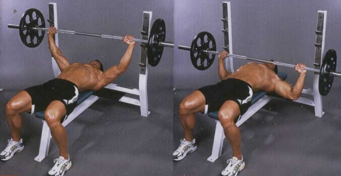 classic bench press