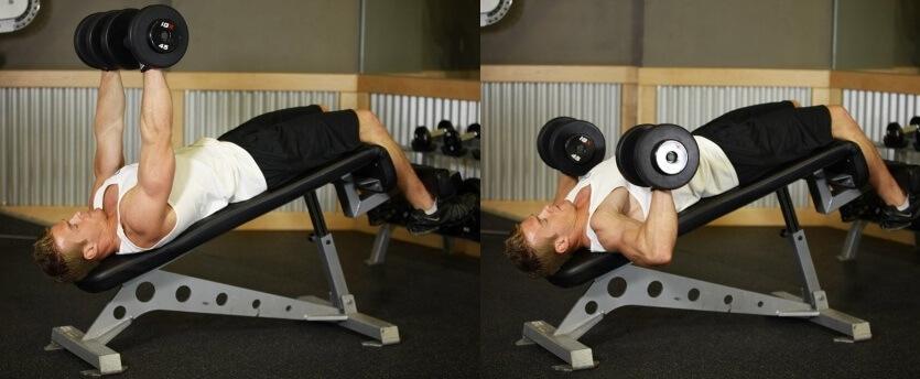 decline dumbbell bench press