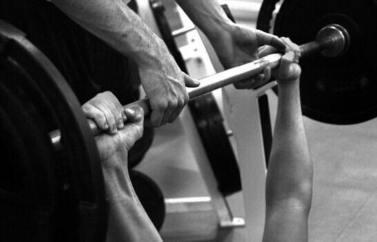 comparison of muscle fiber ratio