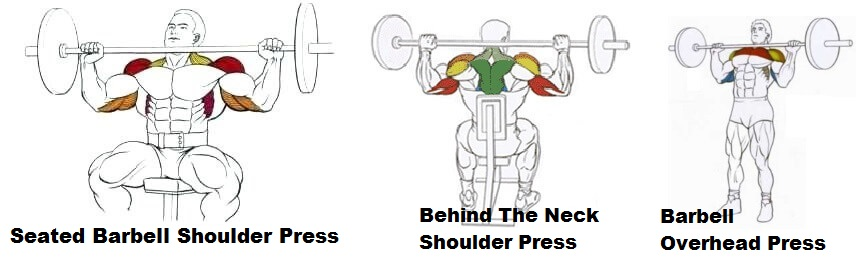 varieties of shoulder presses