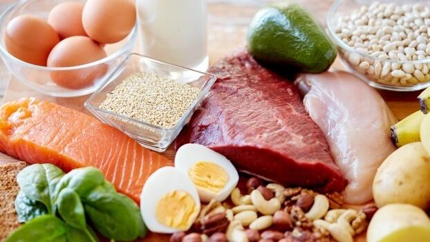 different varieties of protein