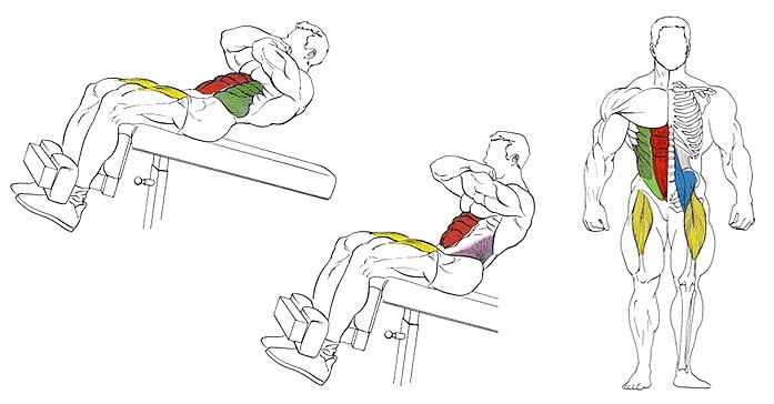 working muscles during crunches