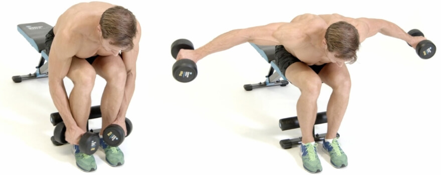 seated dumbbell bent over raise