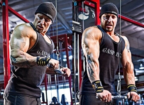 straight bar cable triceps extension